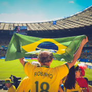 ブラジル太陽光
